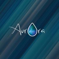 Aurora Window Cleaning Inc.