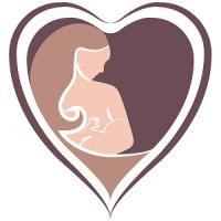 The Breastfeeding Companion