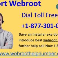 Webroot Support