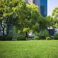 Best Cuts Lawn Care and Landscaping