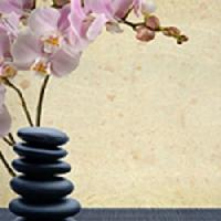 A Therapeutic Massage by Trudie Harris