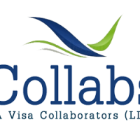 Collabs Immigration