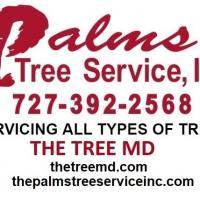 The Palms Tree Service, Inc.