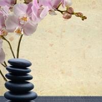 Branson West Therapeutic Massage LLC