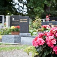 Edward J. Fox & Sons Funeral Home