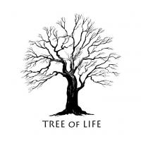 Life Matters Counseling & Therapy