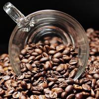Montana Coffee & Tea Service