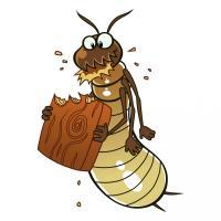 Bug Pro, L.L.C.