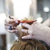 The Cut Salon
