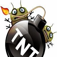 TNT Termite & Pest