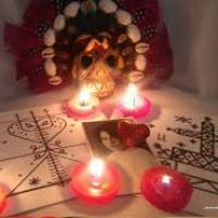 The Best Love problem solution astrologer