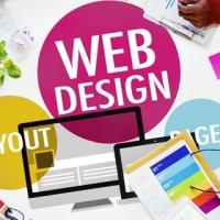 Best website designing company in Indore