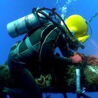 Fisk Marine Insurance International LLC