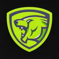 Invincible Lion - Digital Marketing Agency