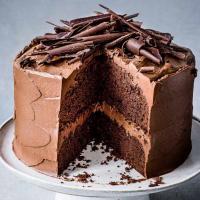 Extreme Chocolate Cake