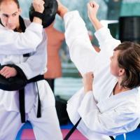 Troy Dorsey's Karate & Fitness - Kickboxing