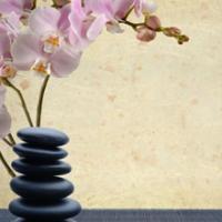 Seeds of Calm Spa