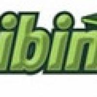 Mini Bin Australia