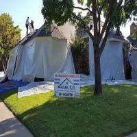T.H.I.S. Roofing & Restoration