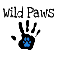 Wild Paws