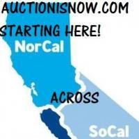 AuctionIsNow.com