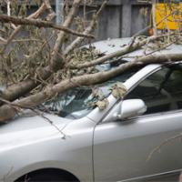 Auto Stop Insurance Services