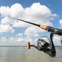 Reel Sport Fishing Charters