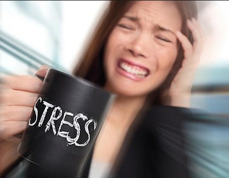 Stress & Susceptibility To Insomnia.jpg1.jpg
