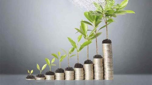 Financial Planning for Every Business by Clique paraplanning