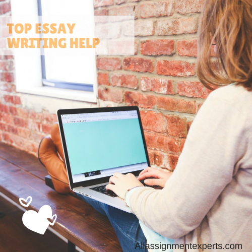 All Assignment Experts - Essay Writing Help