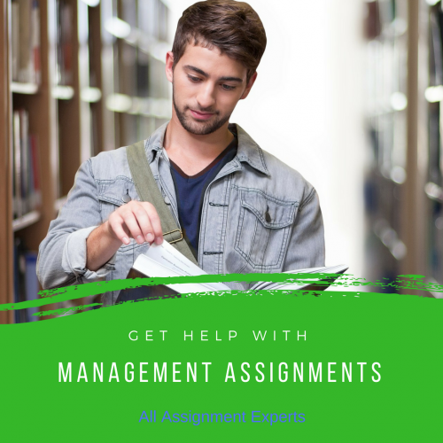 All Assignment Experts - Management Assignment Help