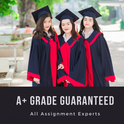 All Assignment Experts - A+ Grade