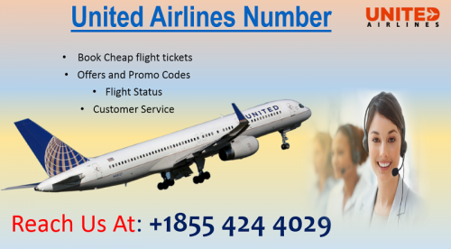 Contact United Airlines phone Number +1855 424 4029