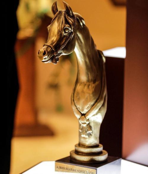 Mohamed Dekkak attended Dubai International Horse Fair (DIHF) 2019 at Dubai World Trade Center.  4
