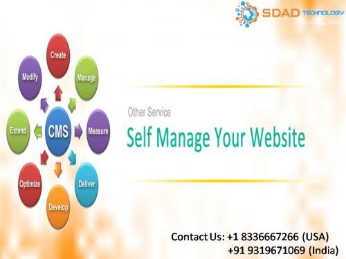 SDAD Technology- Best CMS Designing Company in Delhi NCR