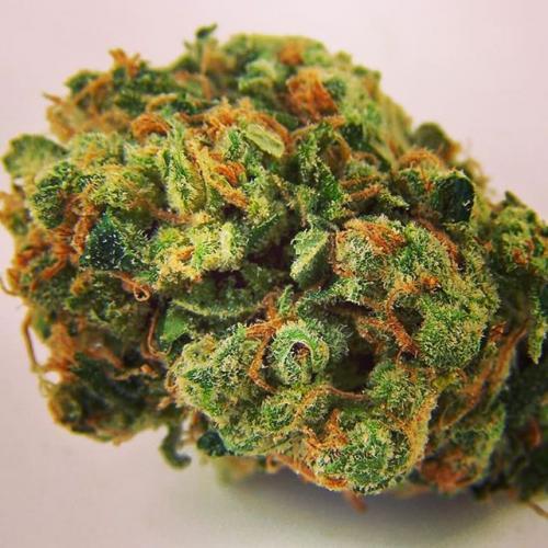 Buy weed