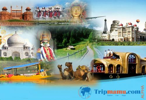 Tour and Travel Operator in India