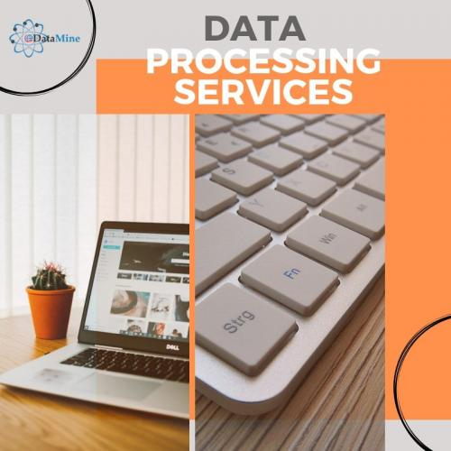 Data Processing Services and Data Conversion Service