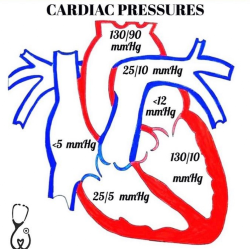 cardiac pressure diagram