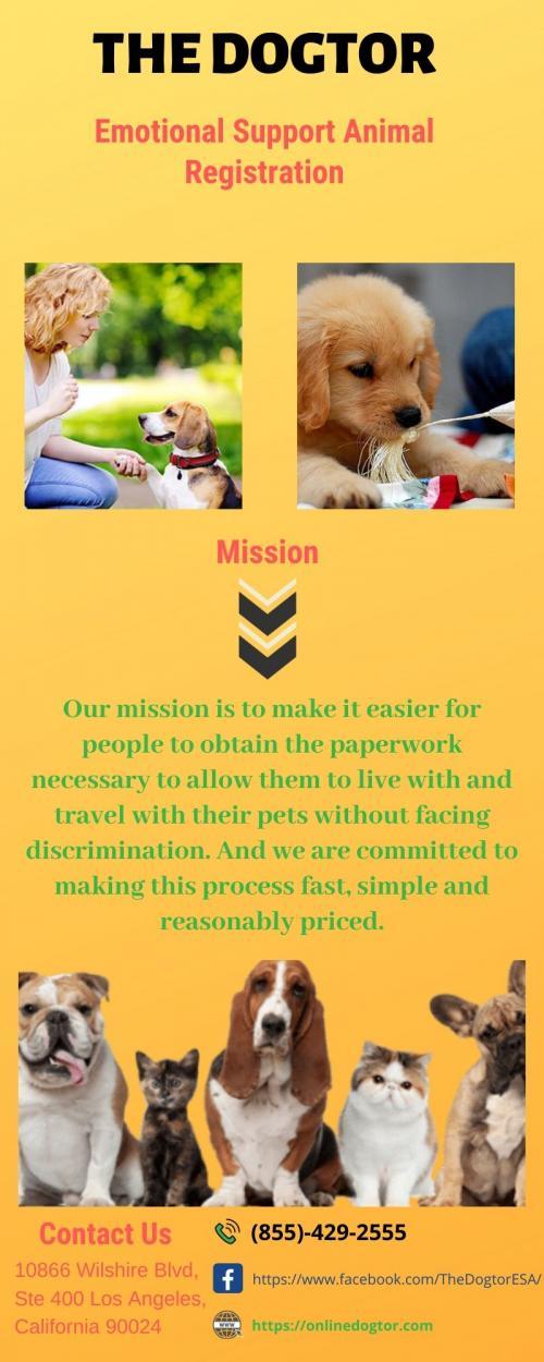 Emotional Support Dog Certification - The Dogtor
