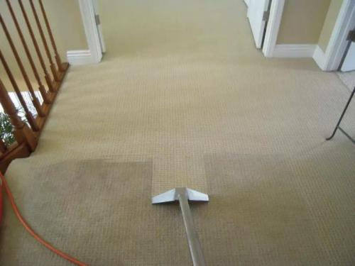 carpet-cleaning-35
