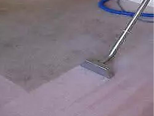 carpet-cleaning-31