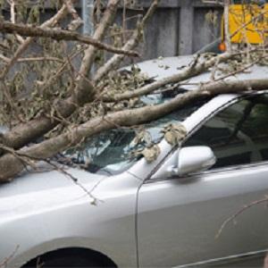 InsuranceServices1