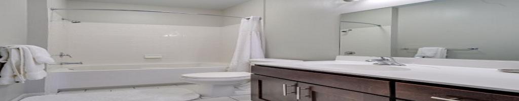 Luxury Apartments New Haven