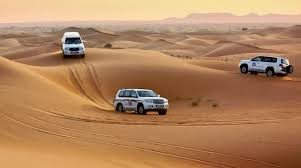 land cruiser desert safari
