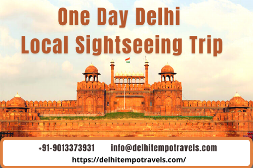 One Day Delhi Local Sightseeing Trip by Delhi Tempo Travels