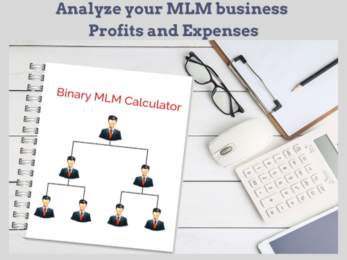 Analyze profits and expenses