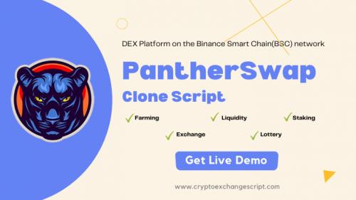 Pantherswap clone software