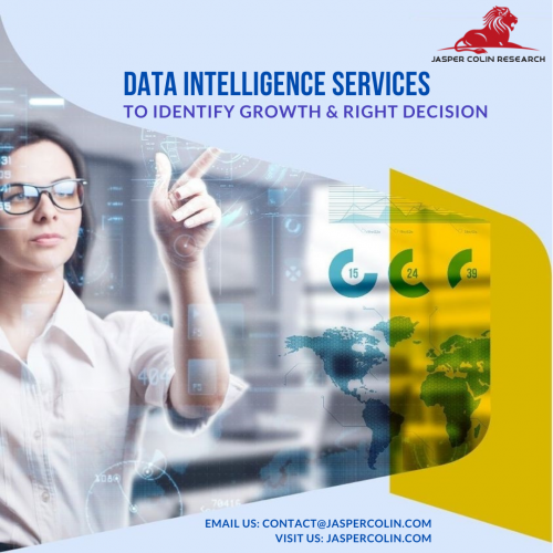 Data Intelligence Services