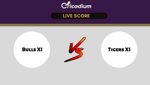 Byju'S Pondicherry T20, 2021 Live Score: BUL vs TIG Match 9 Live Cricket Score Ball by Ball Commentary, Scorecard & Results